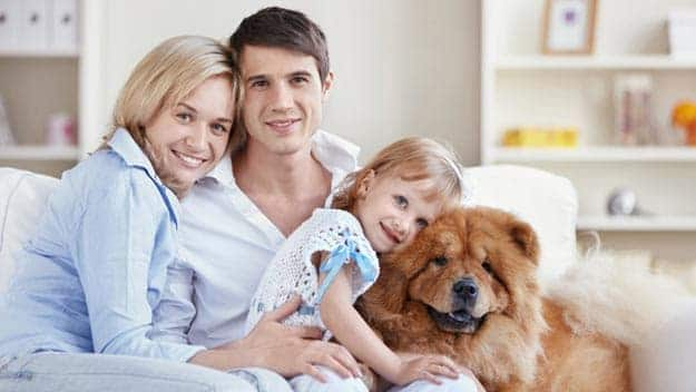 Wills & Trusts dog-young-family Direct Wills Folkestone
